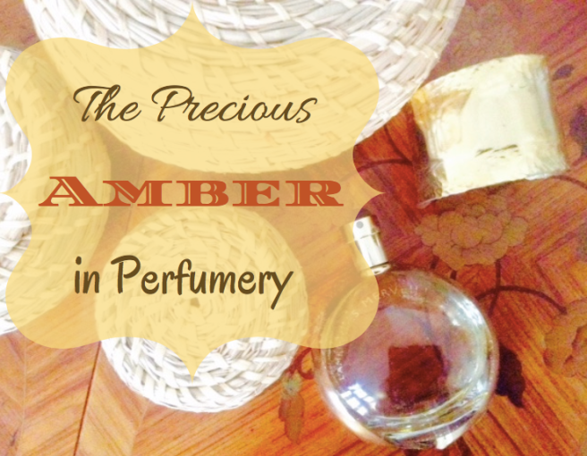 the-precious-amber-in-perfumery